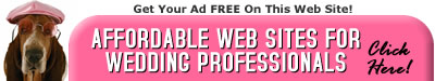 Affordable Web Sites for Wedding Professionals